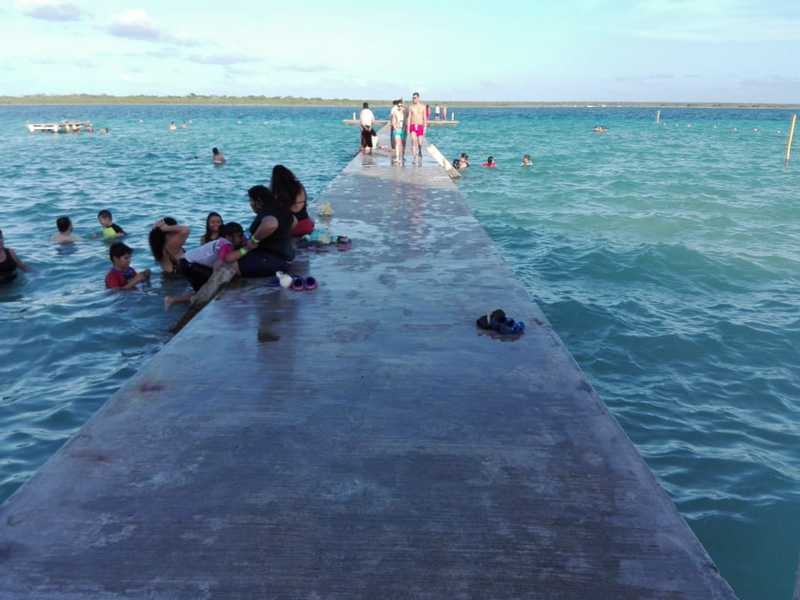 Grave contaminación en laguna de Bacalar
