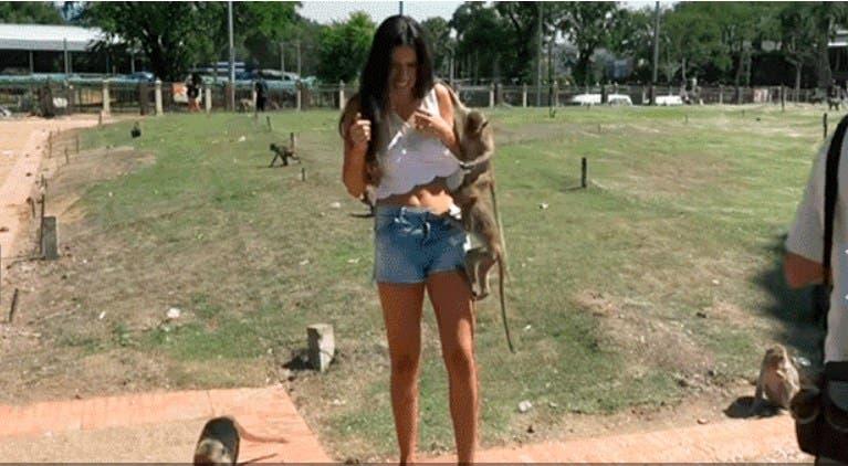 Vídeo: Modelo le hacen broma pesada con monos
