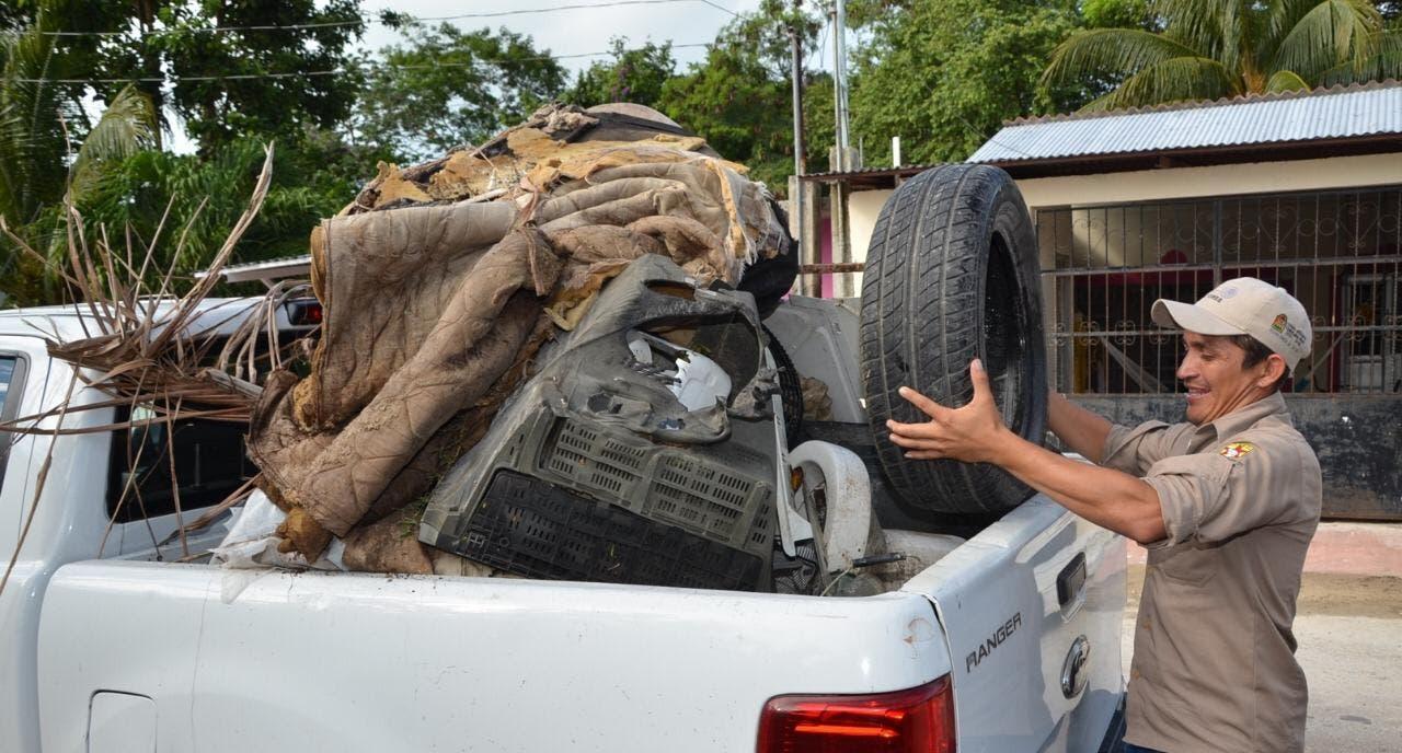 Plaga de moscos invaden colonias de Chetumal