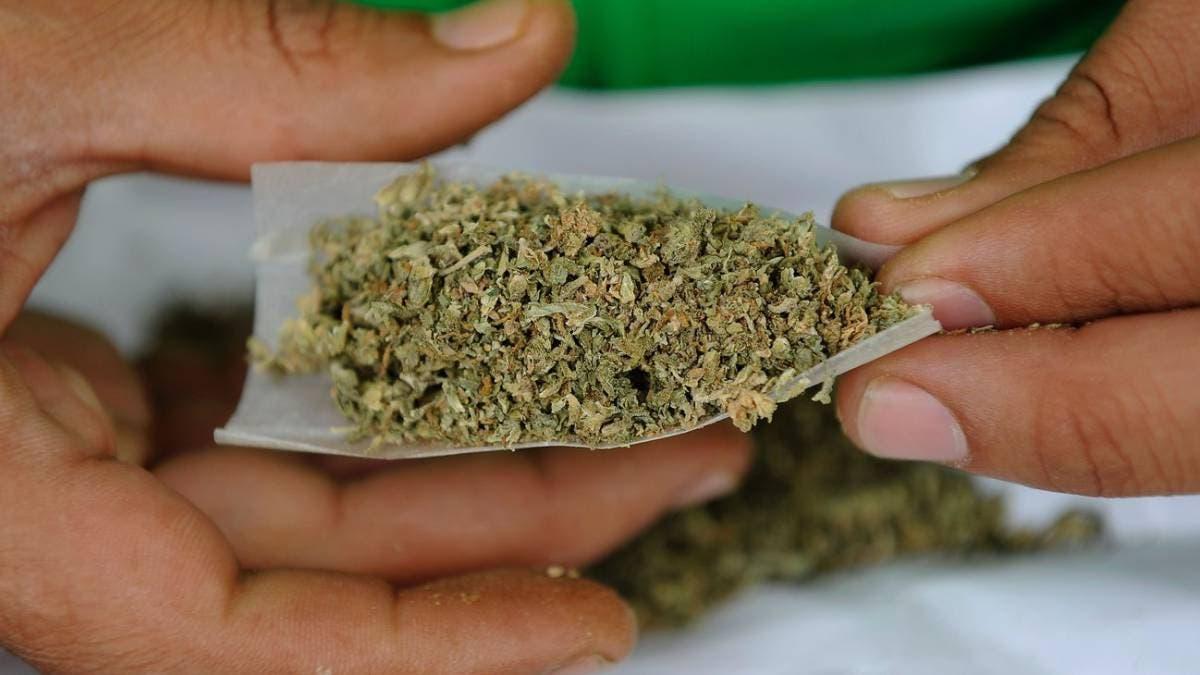 Detienen a consumidores de marihuana en Yucatán