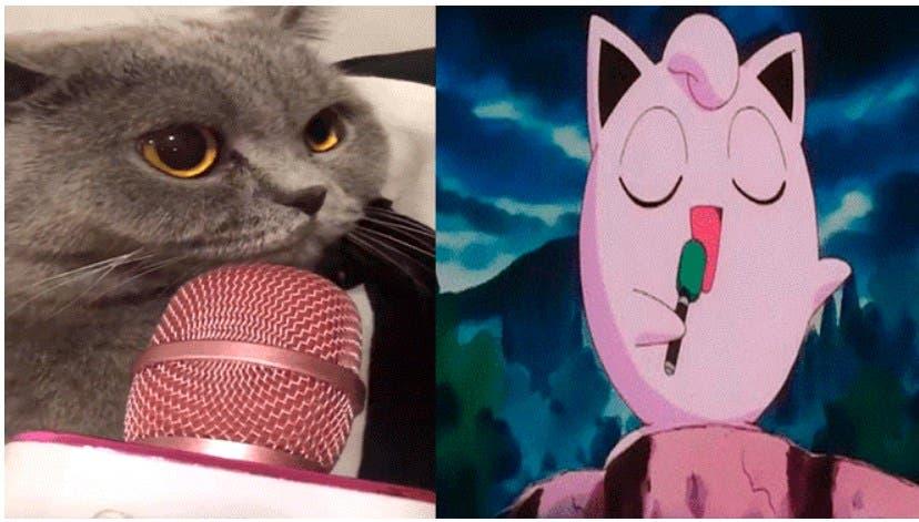 """Vídeo: Gato canta como """"Jigglypuff"""" de """"Pokemón"""""""