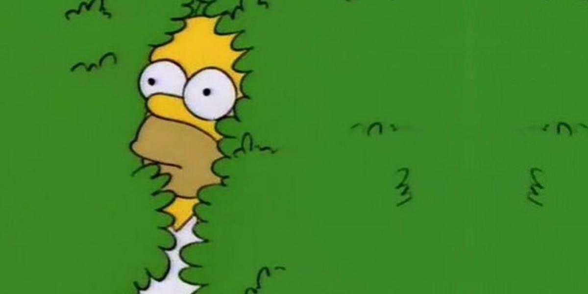 Homero Simpson vuelve a ser viral al usar su propio meme del arbusto