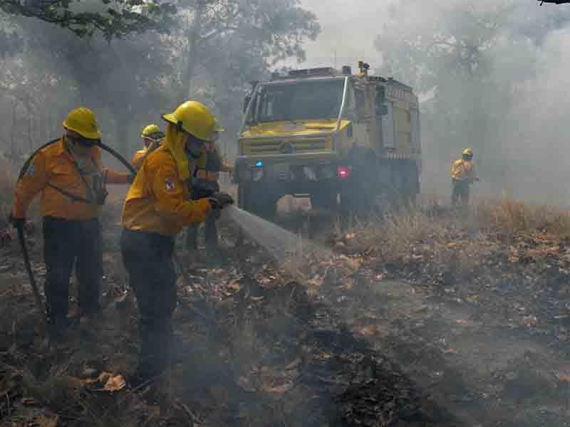 Incendios forestales bacalar