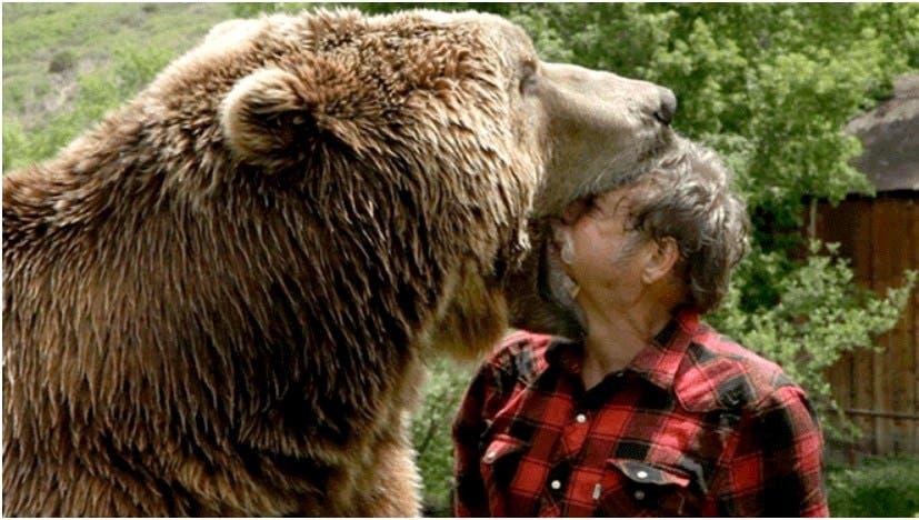 Vídeo: Hombre mete su cabeza en la boca de un oso salvaje