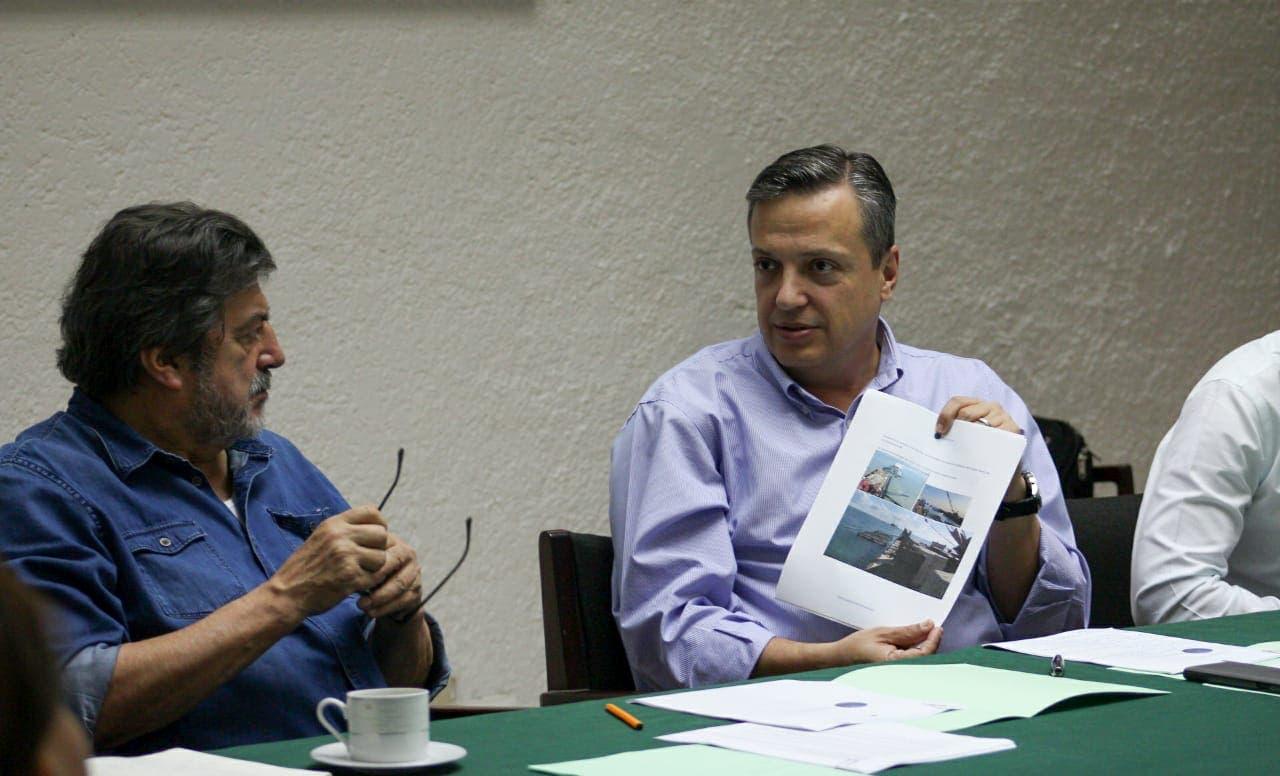 Es urgente encontrar una solución al sargazo : Luis Alegre