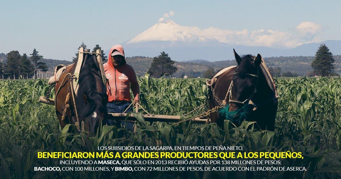 Campesinos de la Zona Maya confían en que el apoyo llegue a tiempo