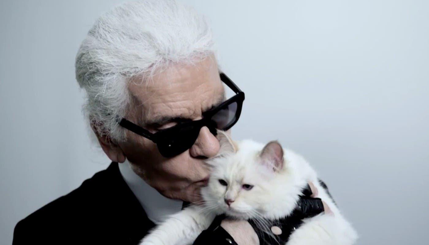 Fotos: Karl Lagerfeld: Conoce a la gata Choupette que hereda su fortuna