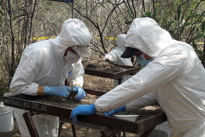 """Hallan """"campos de exterminio"""" Zetas: 47 hornos crematorios"""