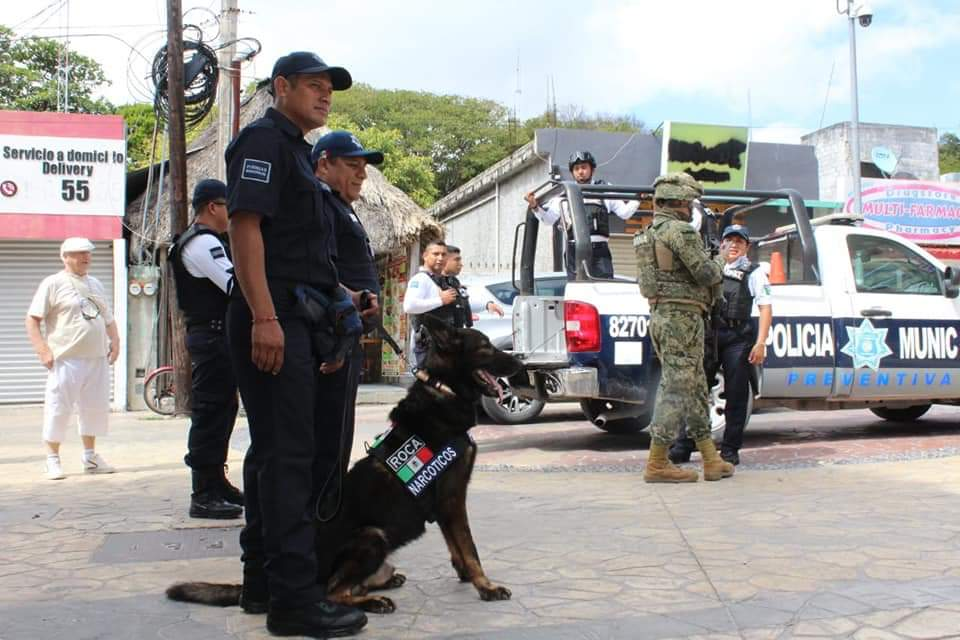 Unidad Canina Playa del Carmen