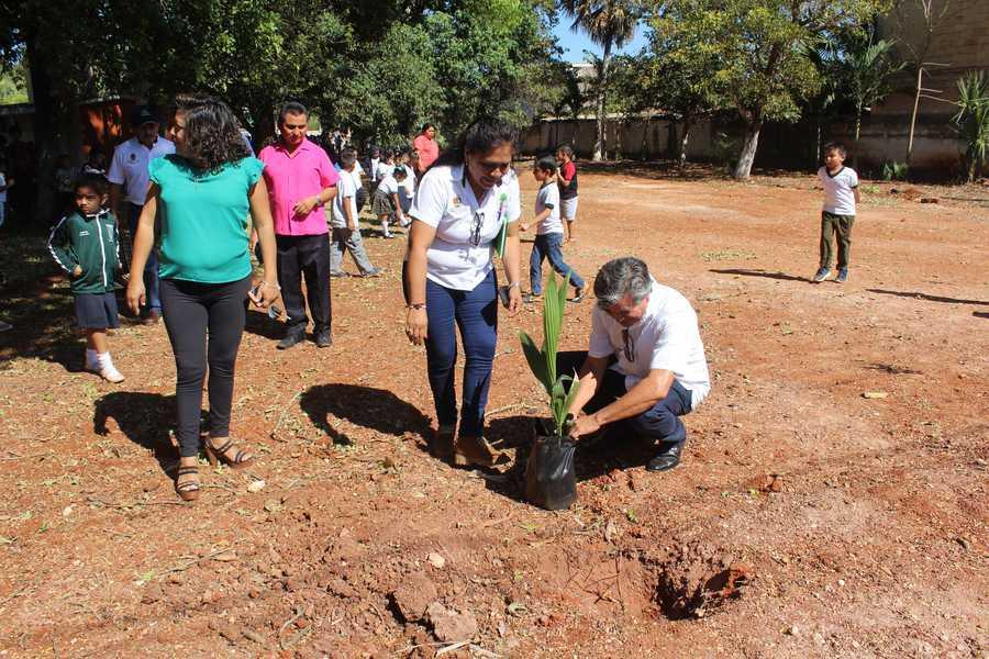 En la conmemoración del Día Internacional del Agua, realizaron actividades de reforestación.