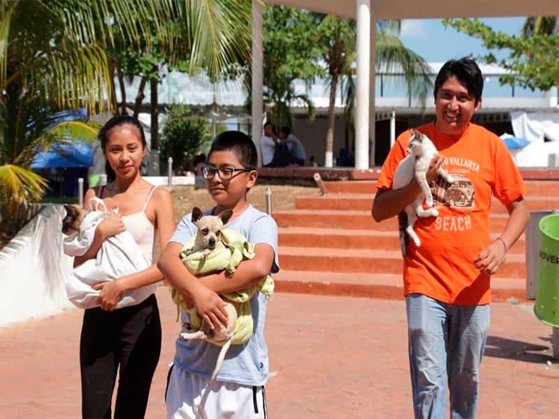 Inicia campaña estatal de vacunación de mascotas