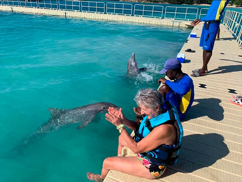 Grupo Dolphin abre su cuarto santuario en Jamaica