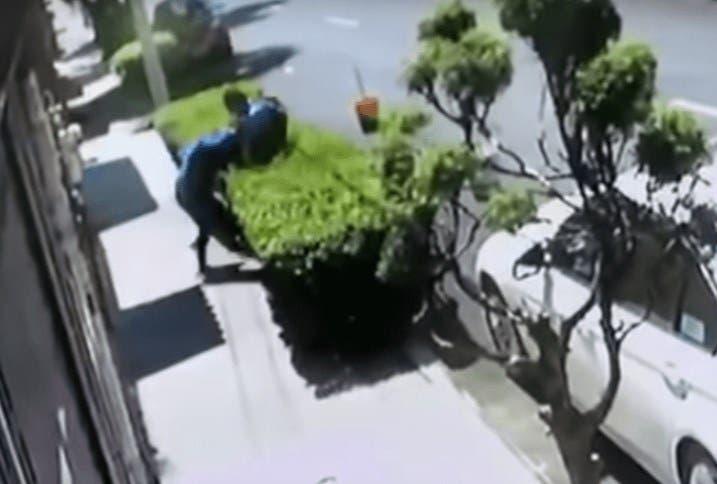 Vídeo: Mujer golpea a ratero en intento de asalto y logra zafarse del sujeto