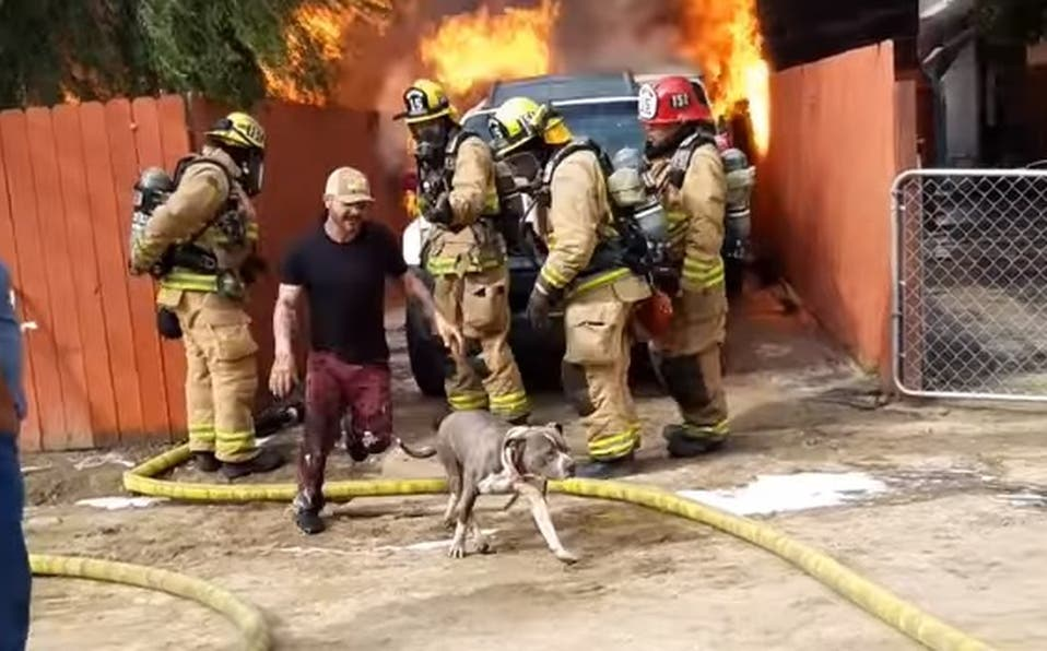 VÍDEO: Hombre salva a perro en incendio