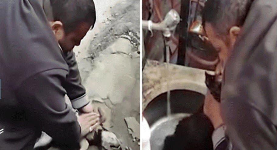 Vídeo: Perro se atraganta, sujeto le da respiración de boca a boca y le salva la vida