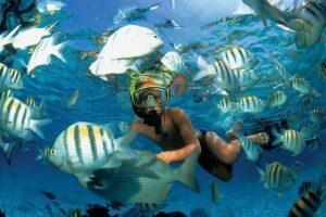 Los mejores sitios atractivos de Quintana Roo a visitar en el Día de la Primavera