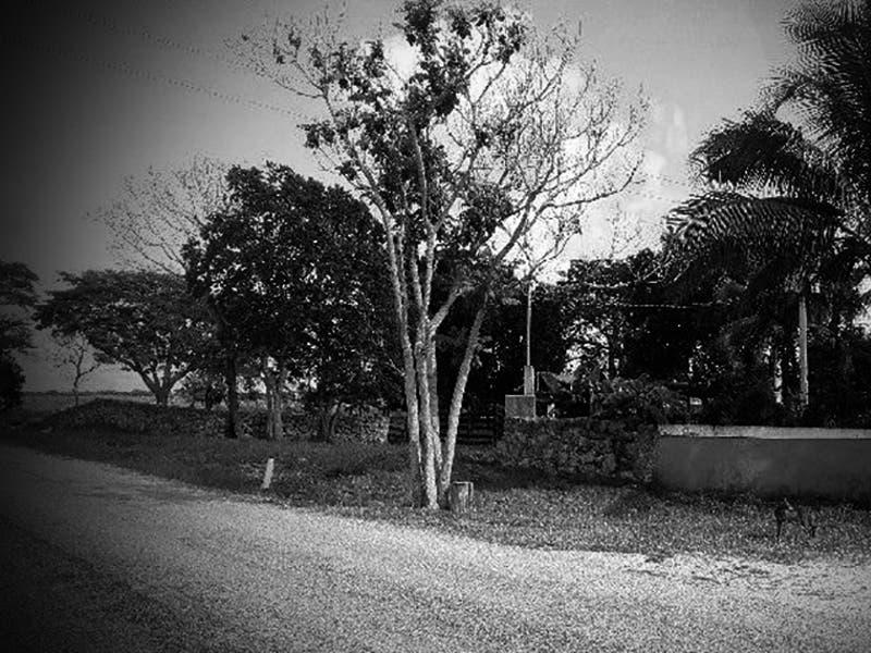 Pelea entre ex cuñados deja un muerto en Yucatán
