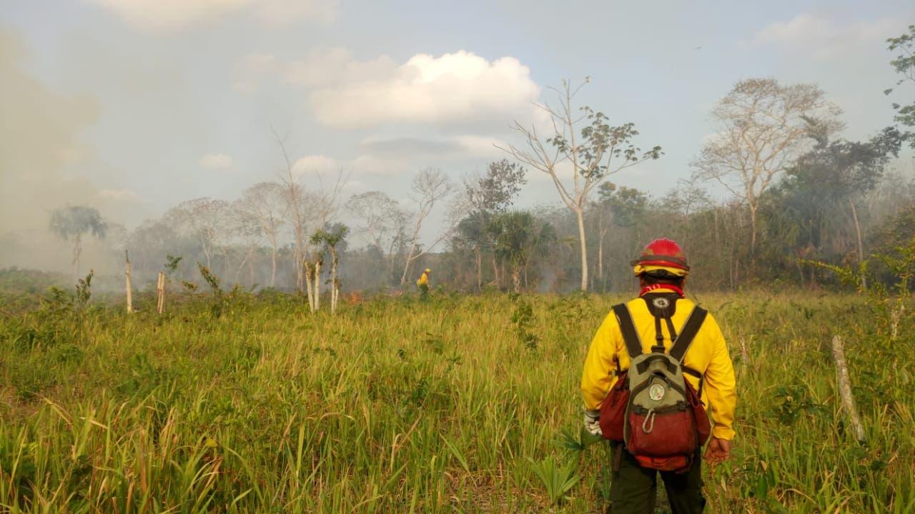 70 a 80% de los incendios que se presentan en Quintana Roo son provocados por el hombre.