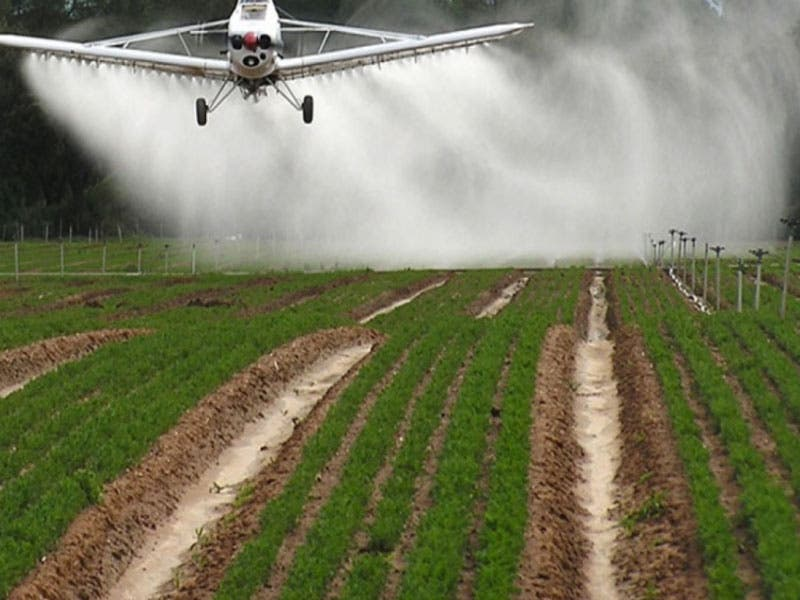 Congreso del Estado busca prohibir el uso de agroquímicos