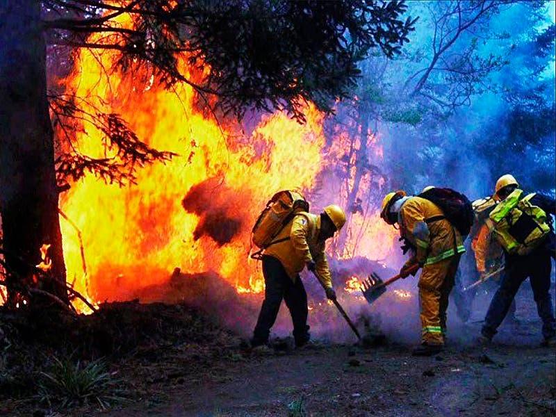 Continúa activo el incendio en la Reserva de la Biosfera Sian Ka´an