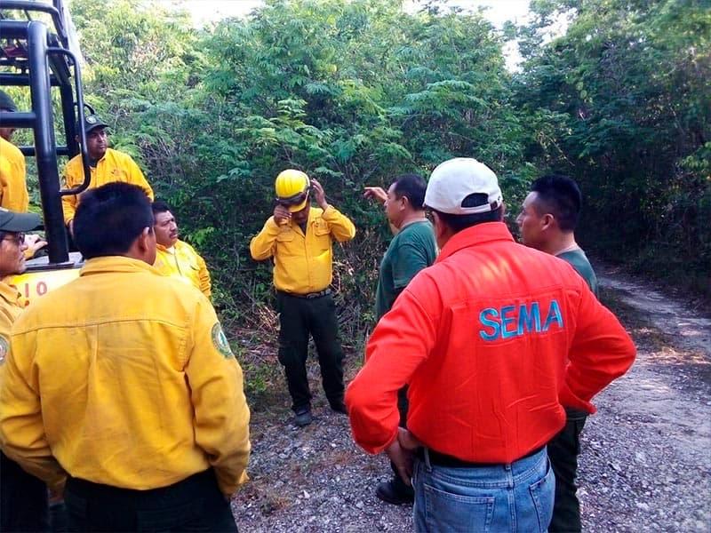 Atienden incendios forestales en Quintana Roo