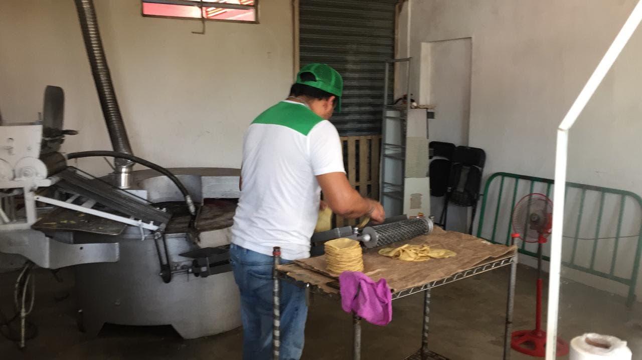 Aún no se tendrá incremento a los precios de la tortilla en Chetumal
