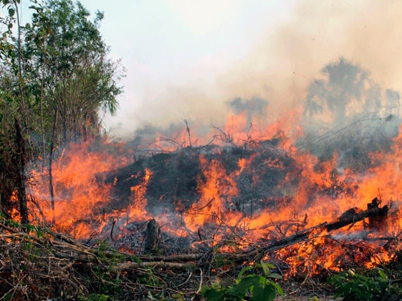 Tres incendios activos en Quintana Roo
