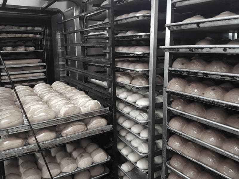 Descubren panadería que vendía droga en Motul