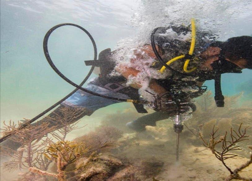 La póliza del seguro permitirá contar con los fondos para una rápida recuperación de arrecifes y playas