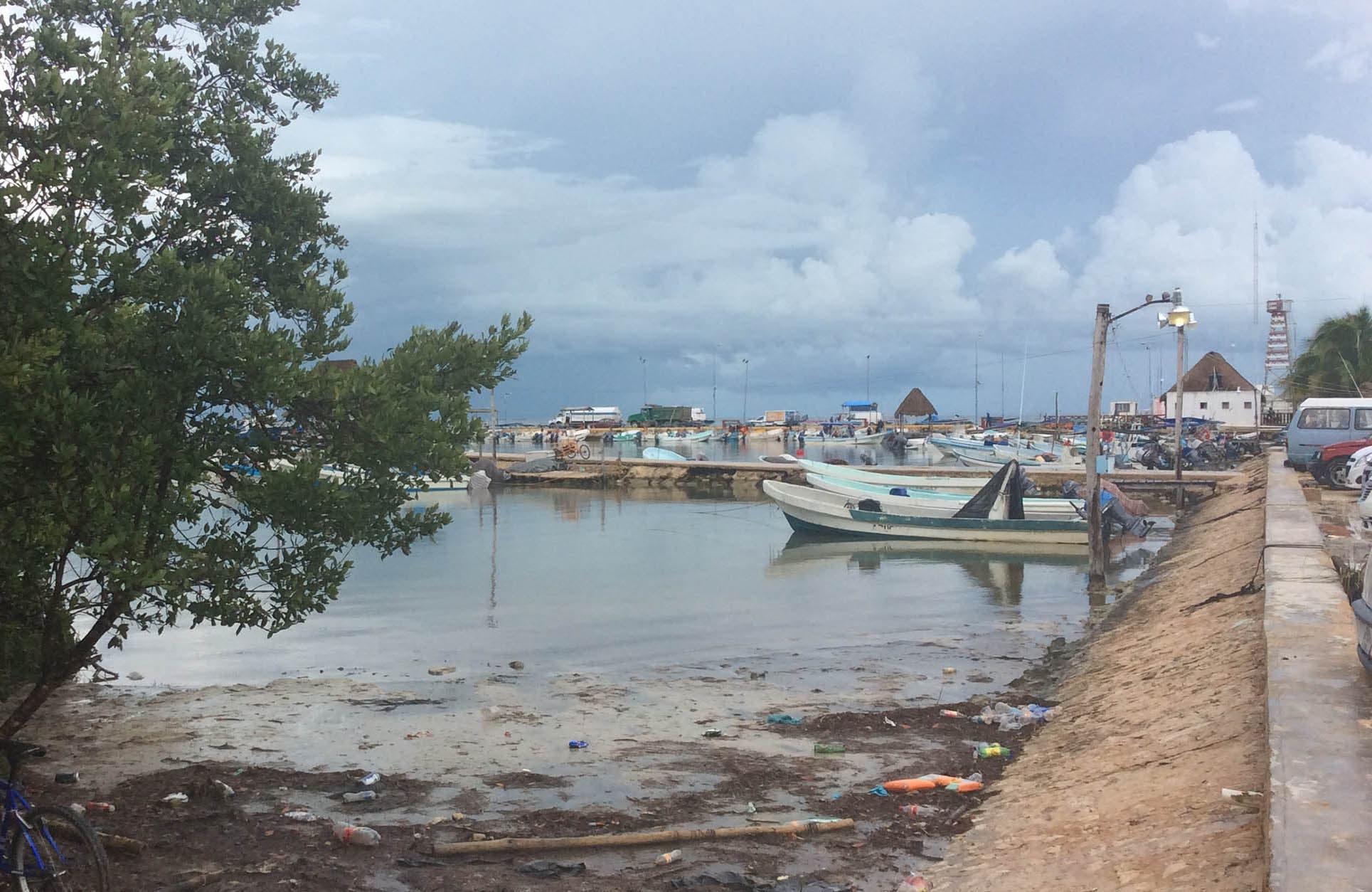 Detener la acumulación de basura en los mares, es urgente