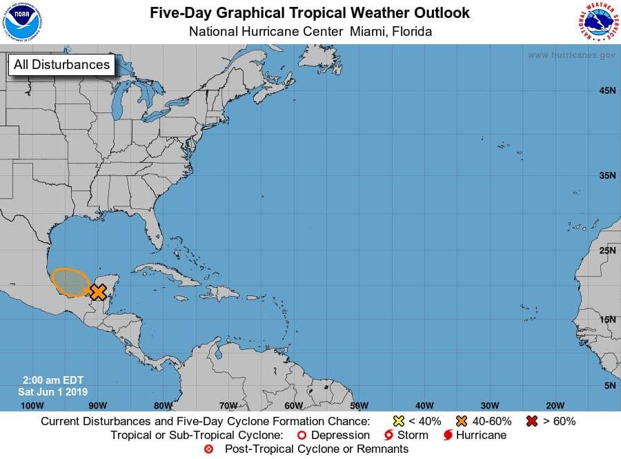 Monitorea Quintana Roo alejamiento de perturbación