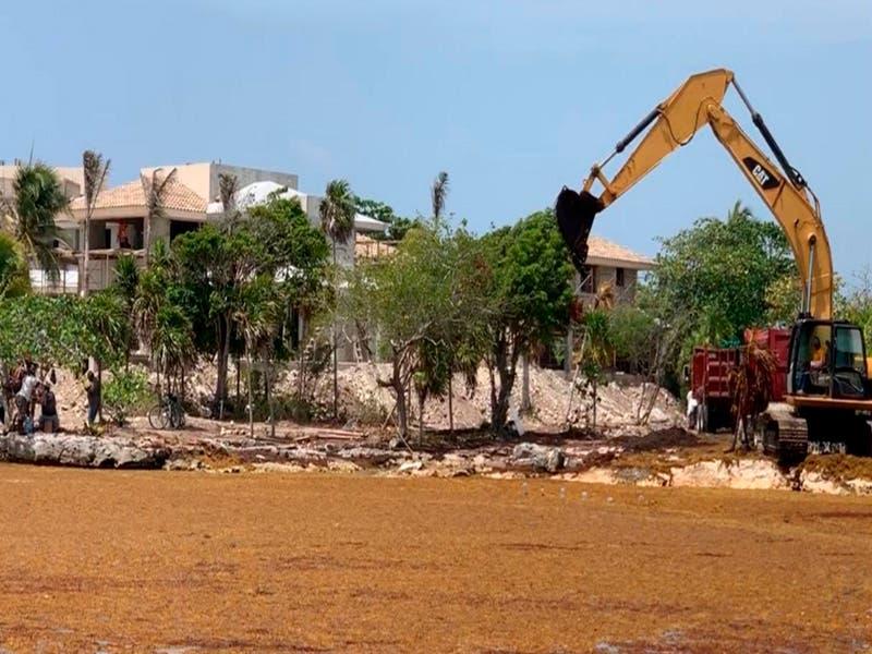 Residentes de Puerto Aventuras denuncian ecocidio