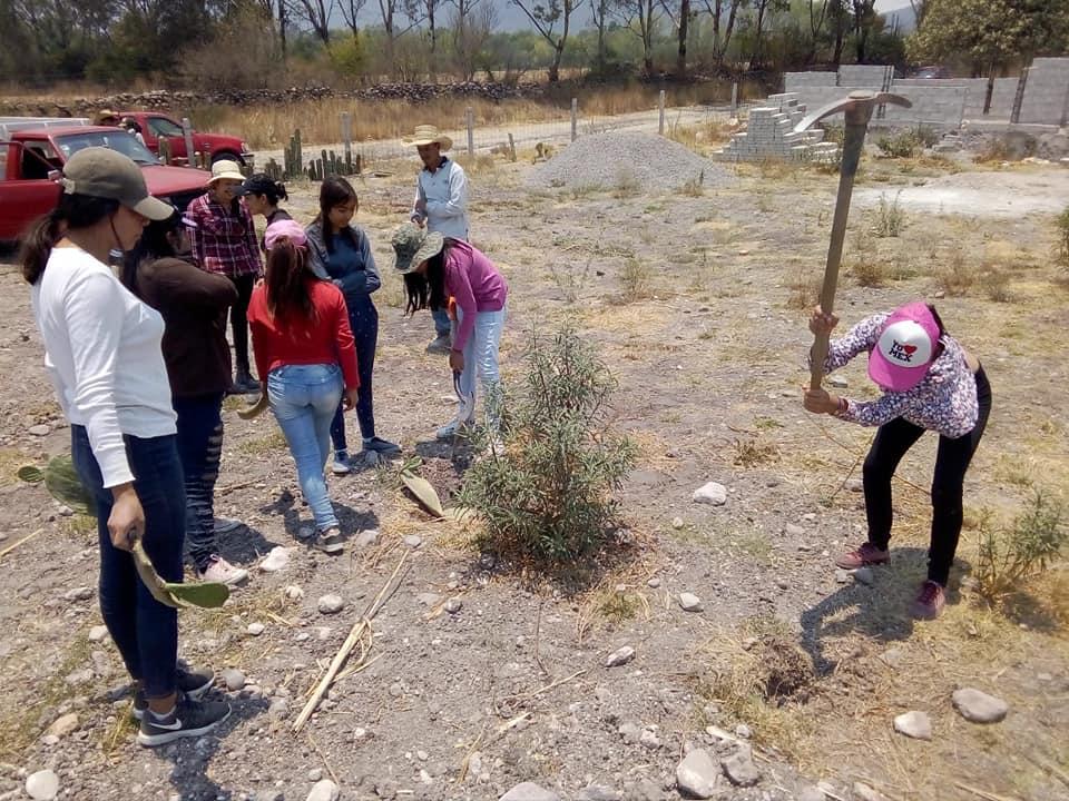 Los estudiantes colaboran con los dos únicos trabajadores que pudieron contratar a acarrear agua, tabiques, arena y demás materiales.