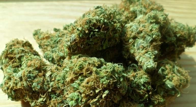 Aseguran 1 kilo de marihuana (foto ilustrativa)