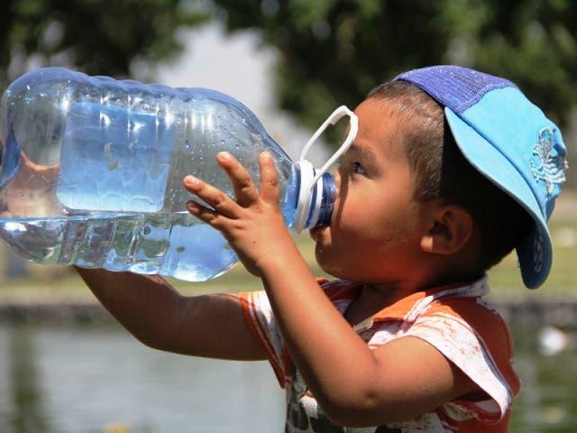 Pronóstico del Clima Yucatán: Jueves caluroso sin posibilidad de lluvias