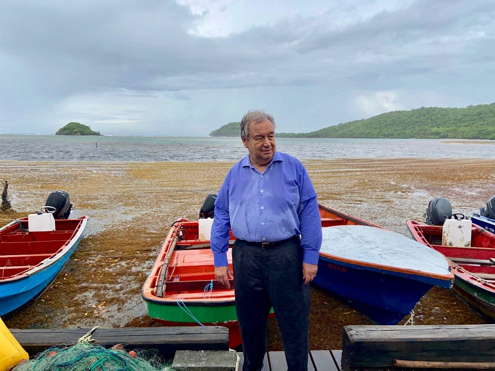 Sargazo afecta a todas las comunidades del Caribe: ONU