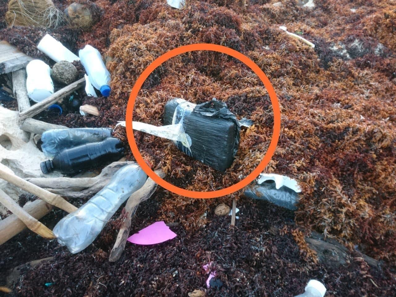 Sedena asegura recale de paquete de presunta cocaína en aguas de Cozumel