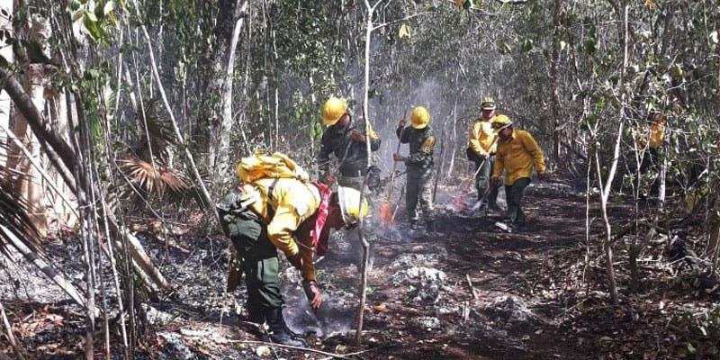 Se tiene cerca de 75% de contención incendio en Sian Ka'an.