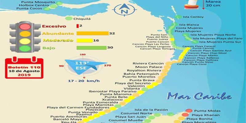 Favorecen vientos el arribo de sargazo a Quintana Roo.