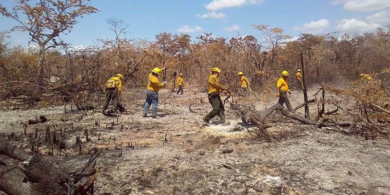 """Avanza liquidación de incendio forestal """"Uaymil"""" en Sian Ka'an; brigadistas del EEMi lelvan más de una semana trabajando en la zona del siniestro."""