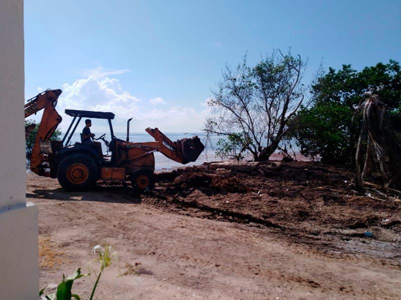 14 toneladas de sargazo retiradas de Mahahual