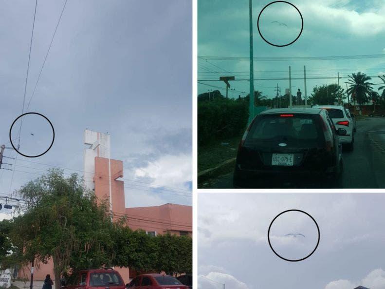 Alarma supuesto fenómeno paranormal en Chetumal; en los últimos días, algunas personas han fotografiado algo extraño que sobrevuela la capital del estado.