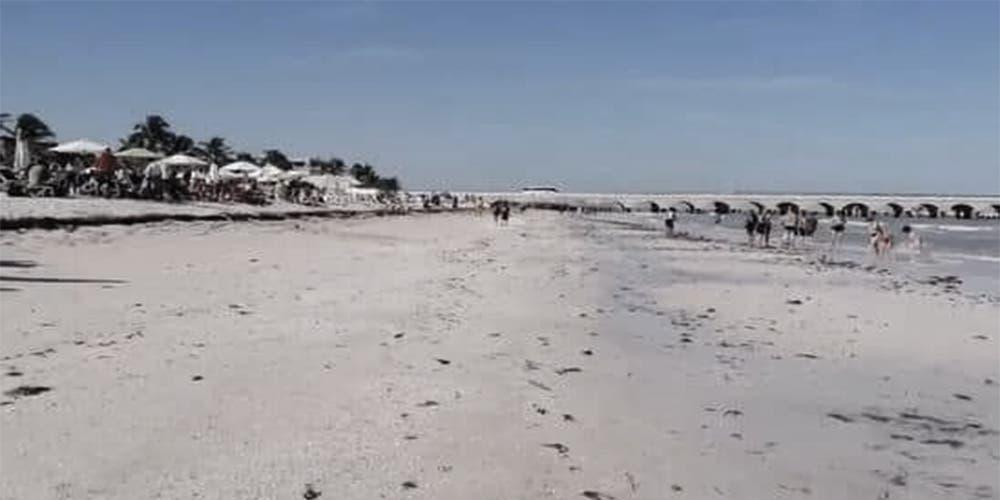 ALERTA: Se aleja el mar en Progreso