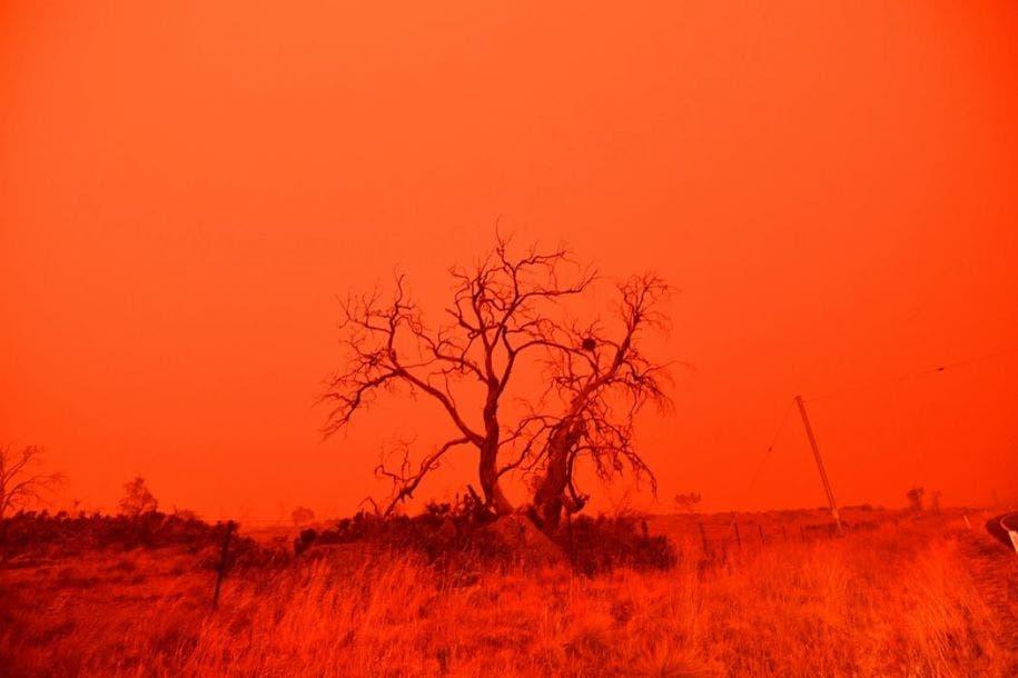 El cielo se vuelve rojo por el humo del incendio de Snowy Valley a las afueras de Cooma, el 4 de enero de 2020. Saeed Khan / AFP