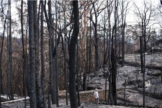 La magnitud de los daños por los incendios en Australia es devastadora