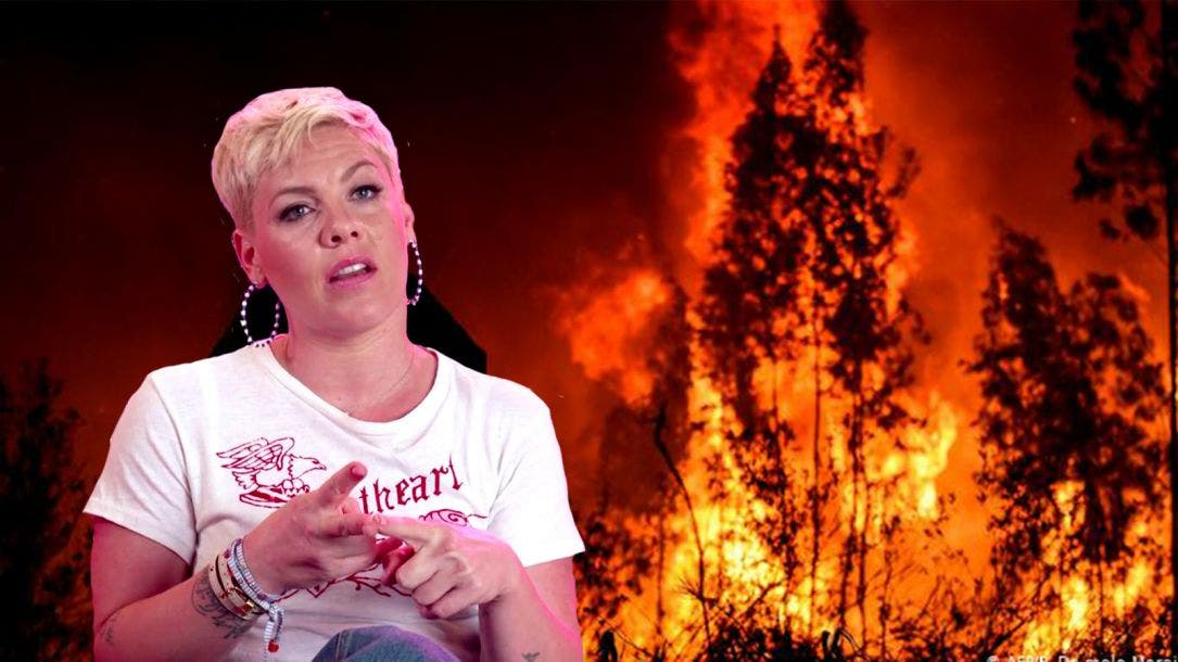 Donará Pink medio millón de dólares contra incendios en Australia