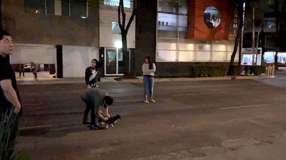 Terror: Suena alerta sísmica en varias alcaldías de CDMX