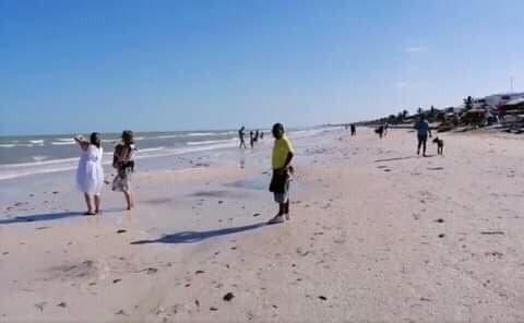 Se aleja el mar 50 metros de las costas yucatecas; descartas autoridades que se trate de una alerta de tsunami.