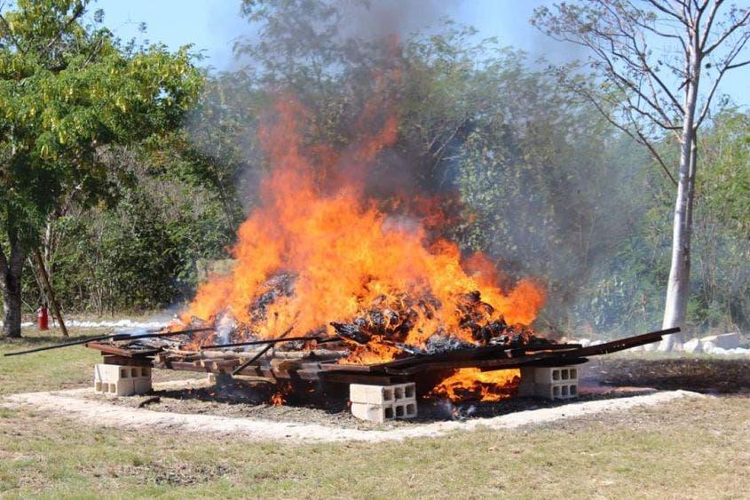 Incineran droga y especies decomisadas en Yucatán.