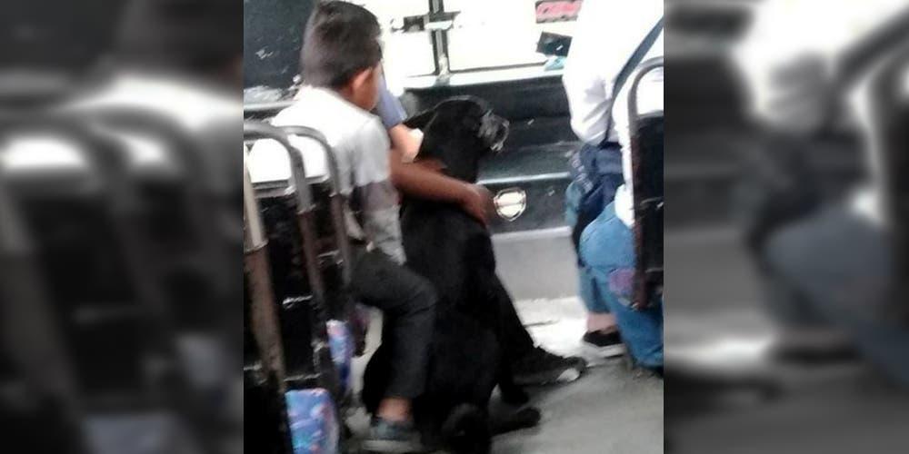 """Chofer de camión deja subir a niños de """"bajos recursos"""" junto a su perro"""